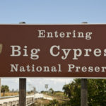 NPS Adventures: Big Cypress National Preserve